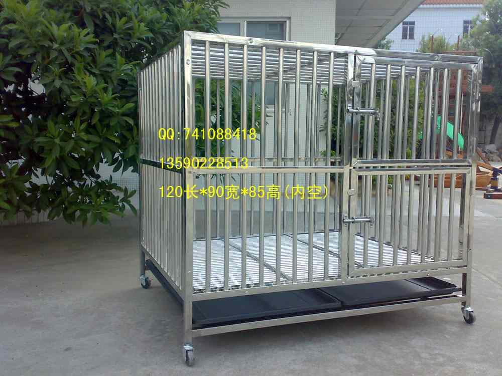 自制大型犬笼子内容|自制大型犬笼子版面设计